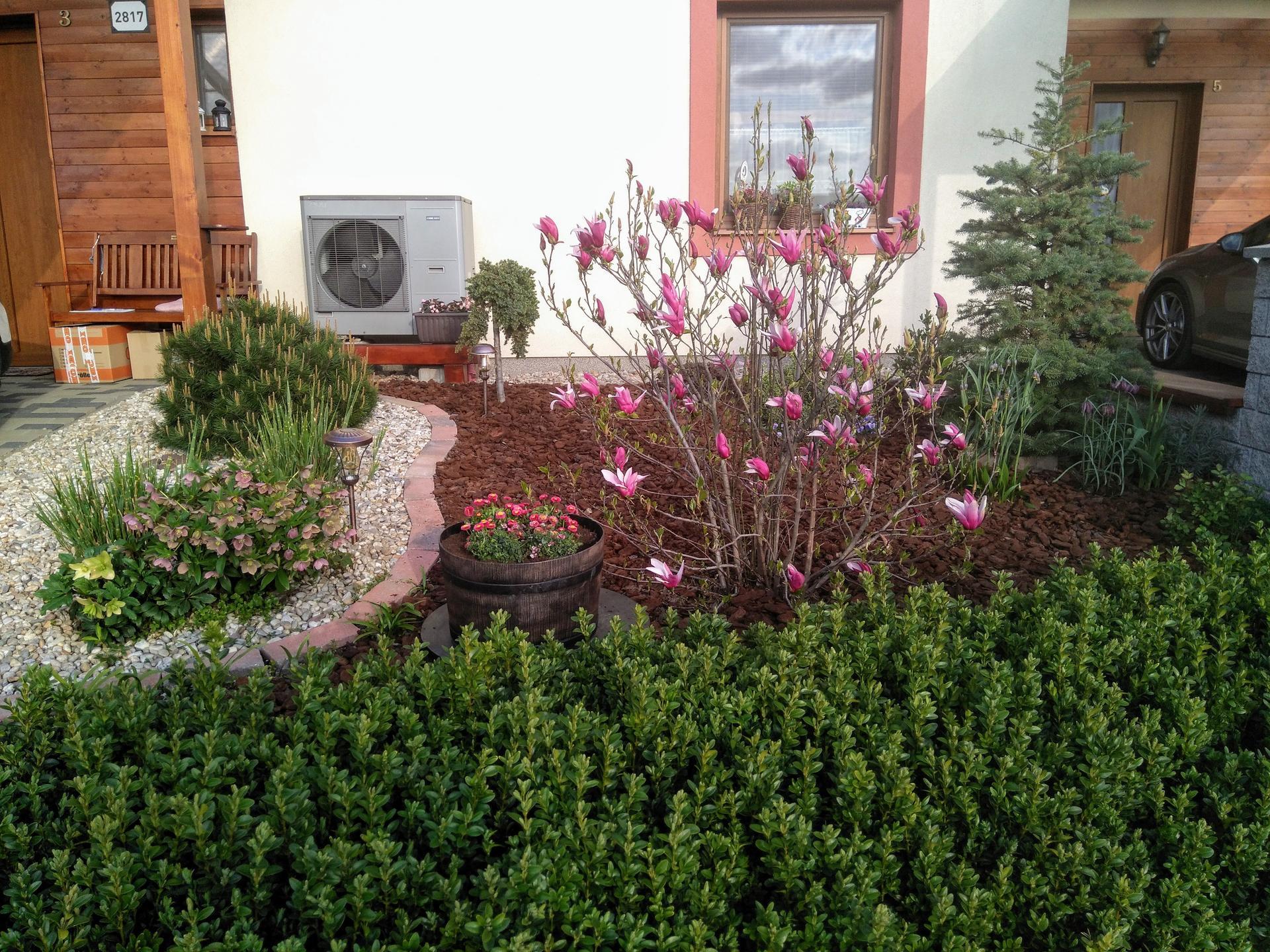 Malá záhradka - predzáhradka