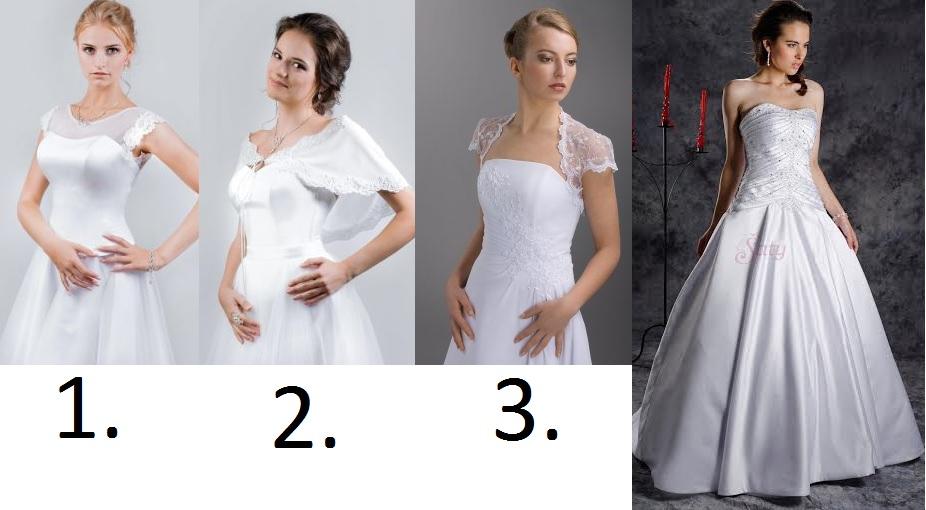 1.,2. alebo 3. ? alebo... - Obrázok č. 1