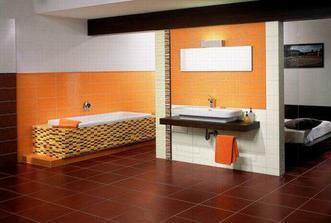 takovýhle obklady do koupelny..ovšem jiná vana,jiný umyvadlo...jiný všechno,jen ty obklady stejný :-D