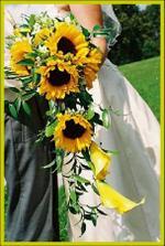 ...slunečnice miluju...