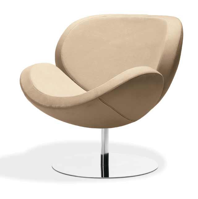 Stavba a interier - Shelly chair....