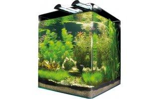 Bydlíme :) - společný dárek :) akvárko pro drobné rybky nebo krevety
