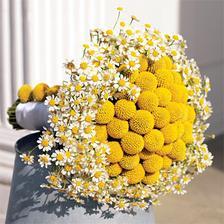 moc pěkná a romantická kytička:-)