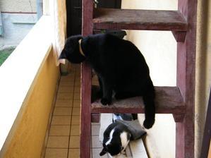 Tebe je to tak jedno, že som na rebríku...