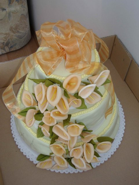 Andrea{{_AND_}}Martin - torta 3