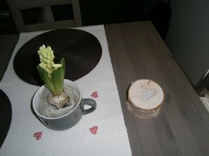 Hyacint sa už bude otvárať a krásne rozvoniavať..., vpravo mám podložky pod poháre