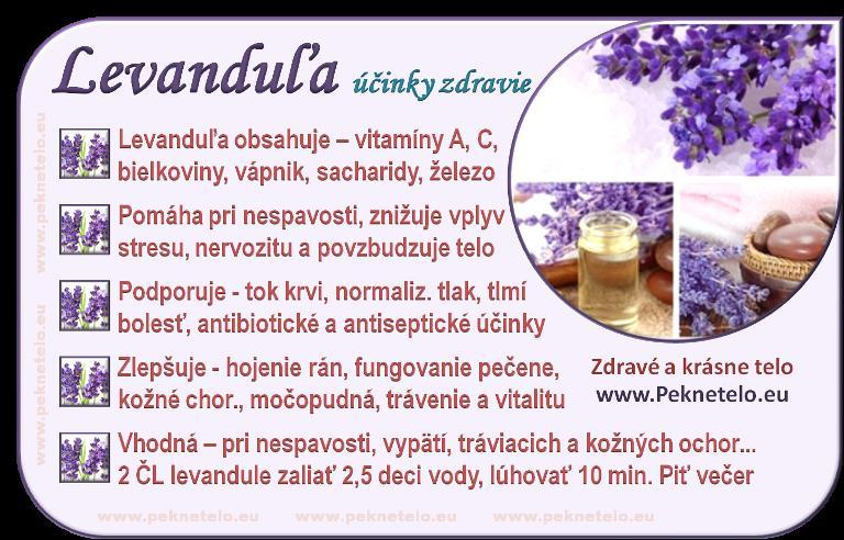 Bylinky a ovocie...receptíky z nich - Levanduľa
