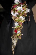 orchidej střevíčník