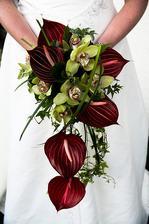 anturie, orchidej, břečťan