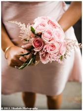růže, astilbe