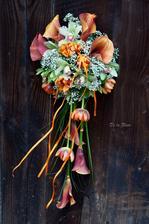 Kala, tulipán, orchidej, gypsa