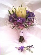 hortenzie, levandule, růže, caleocephalus, leucospernum