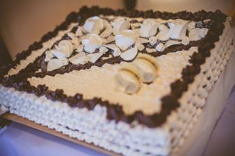 zopár záberov našich tortiiek ......narátali sme ich okolo 13 :D