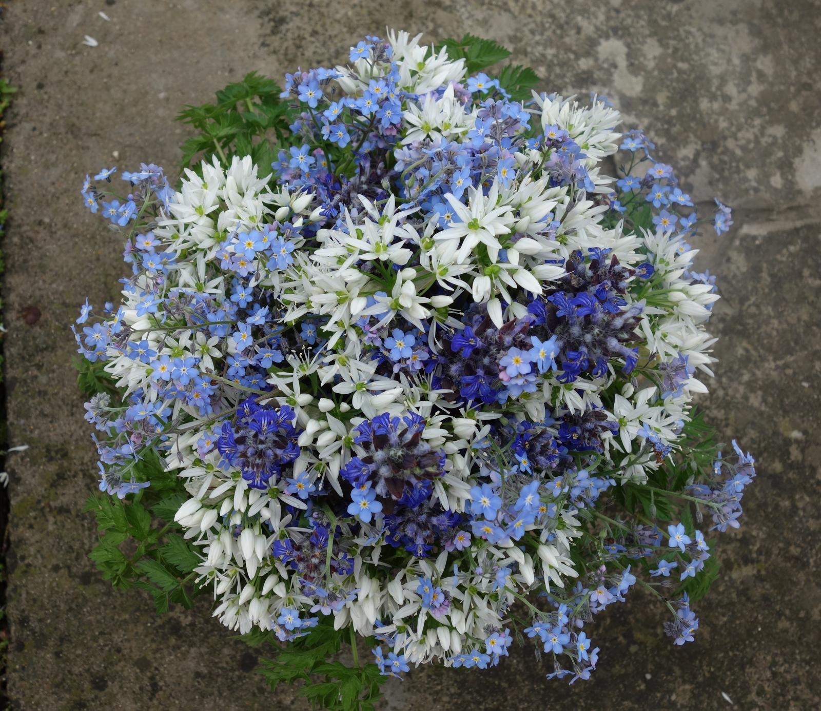 Malá inšpirácia kytíc z lokálnych , slovenských kvetov - Obrázok č. 3