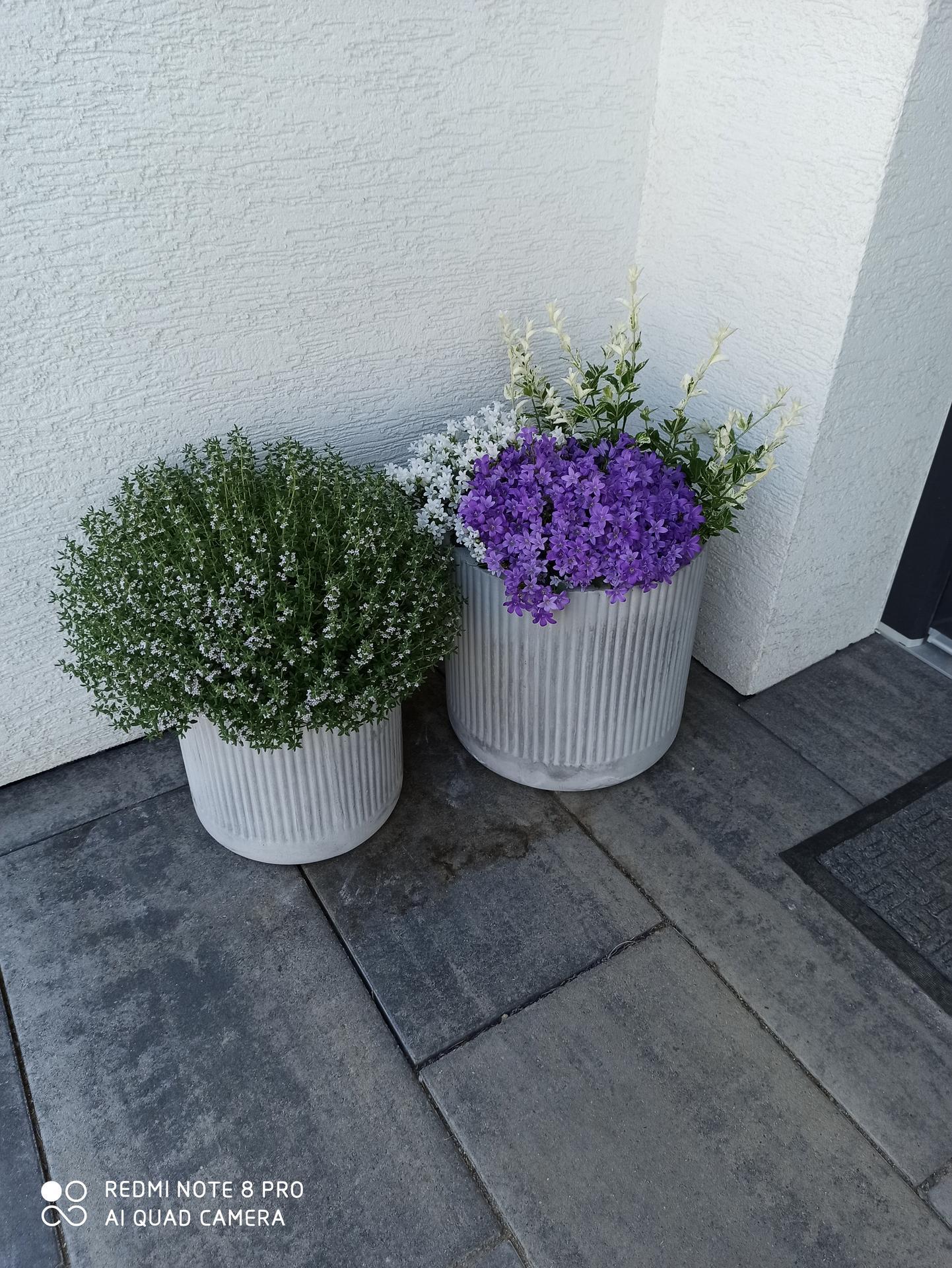 Tvoříme si zahradu... - Obrázek č. 20