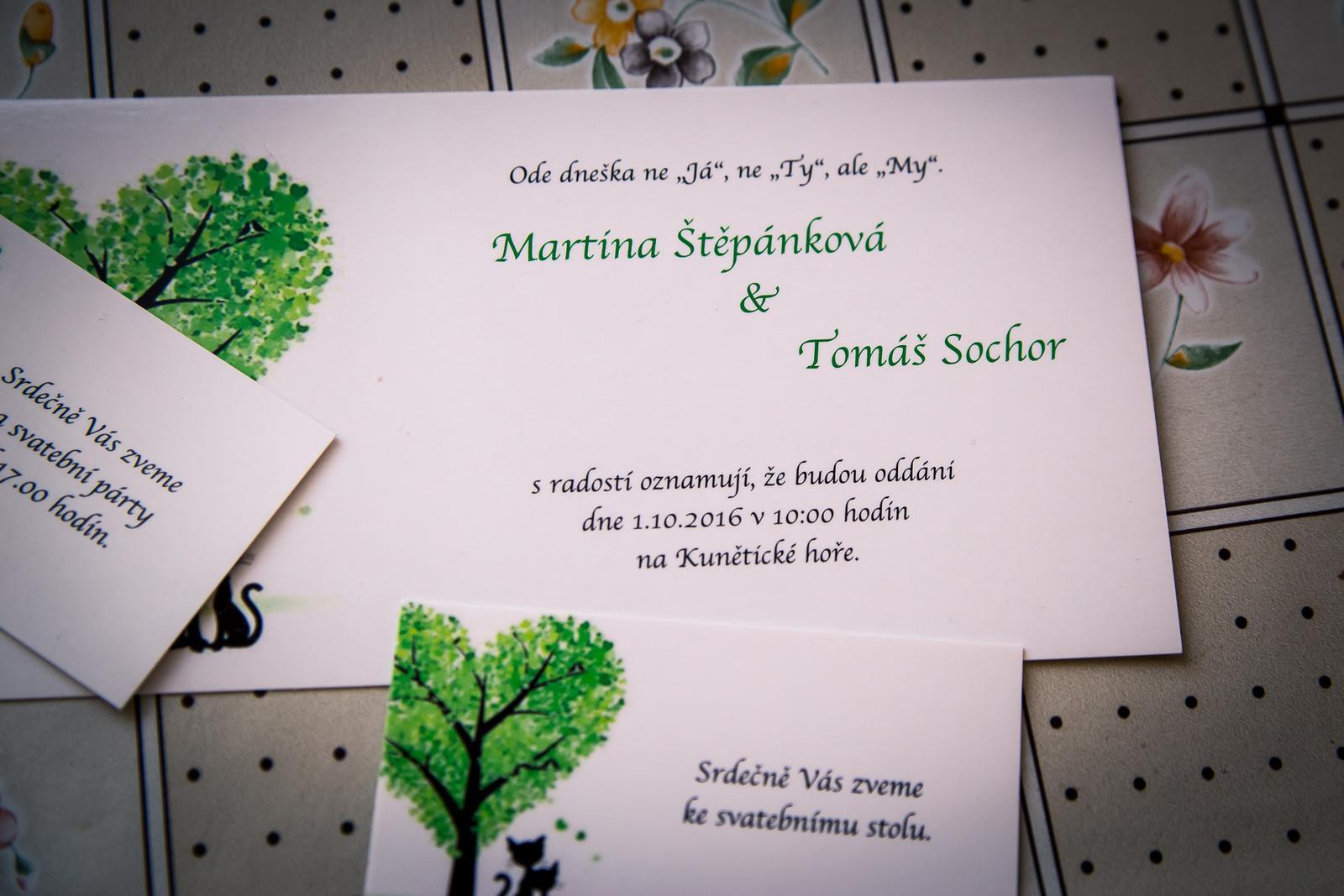 Martina Štěpánková{{_AND_}}Tomáš Sochor - Obrázek č. 2