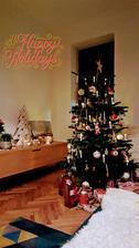 Prve vianoce vo vlastnom