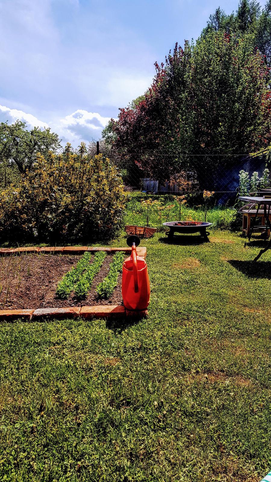 Zahrada a upravy okolo domu - Obrázok č. 25