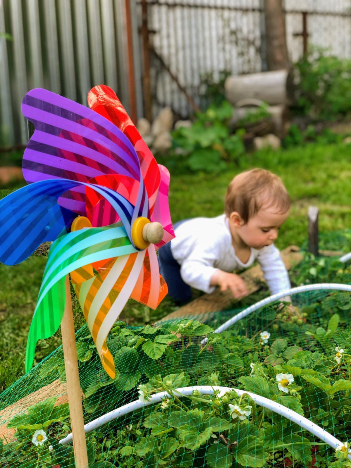 Zahrada a upravy okolo domu - Obrázok č. 45