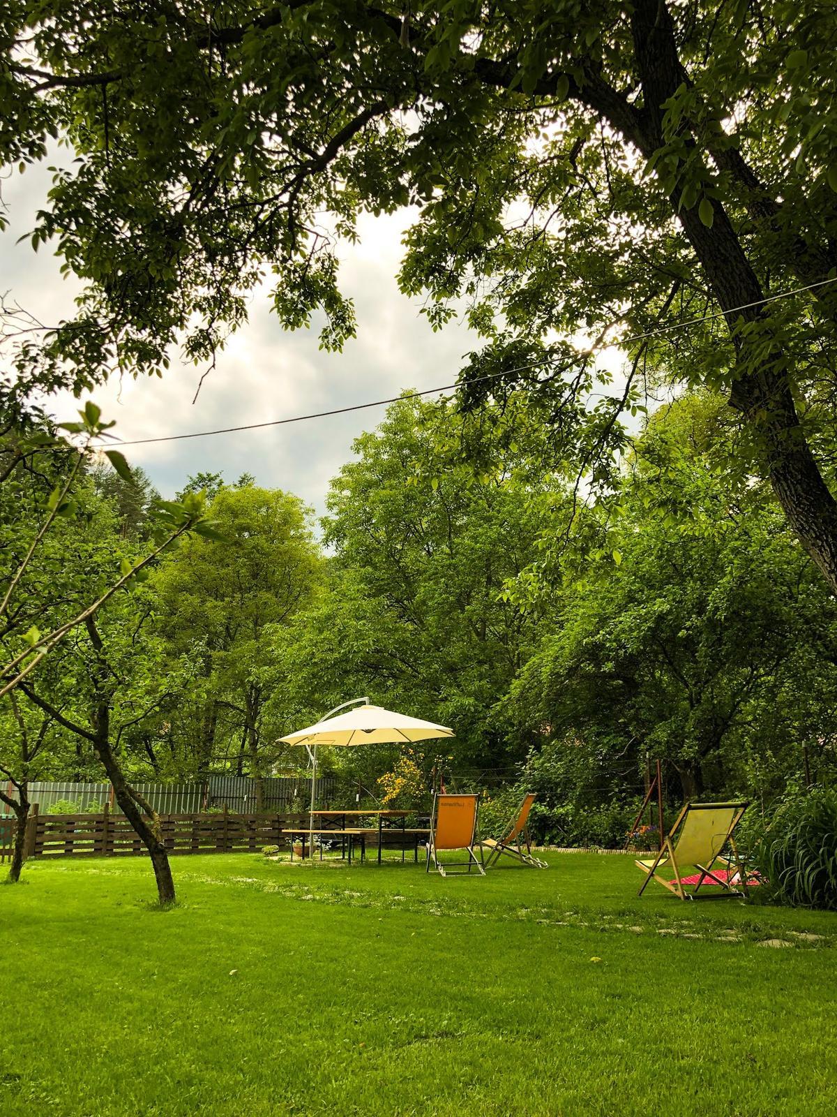 Zahrada a upravy okolo domu - Obrázok č. 50
