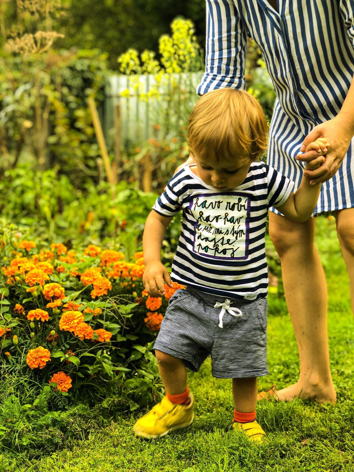 Zahrada a upravy okolo domu - Obrázok č. 59