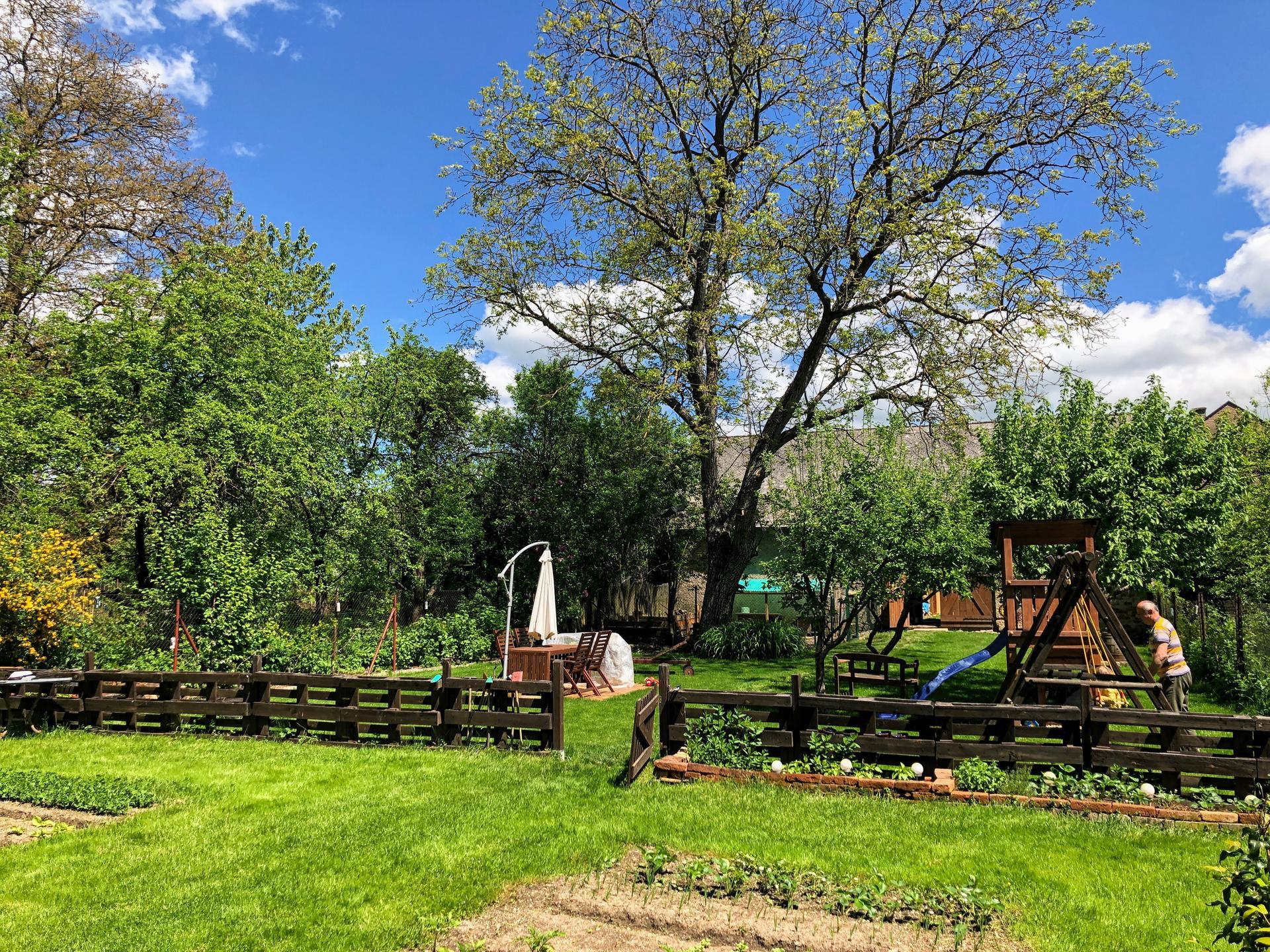 Zahrada a upravy okolo domu - 2021 setup ,novy plot a brana