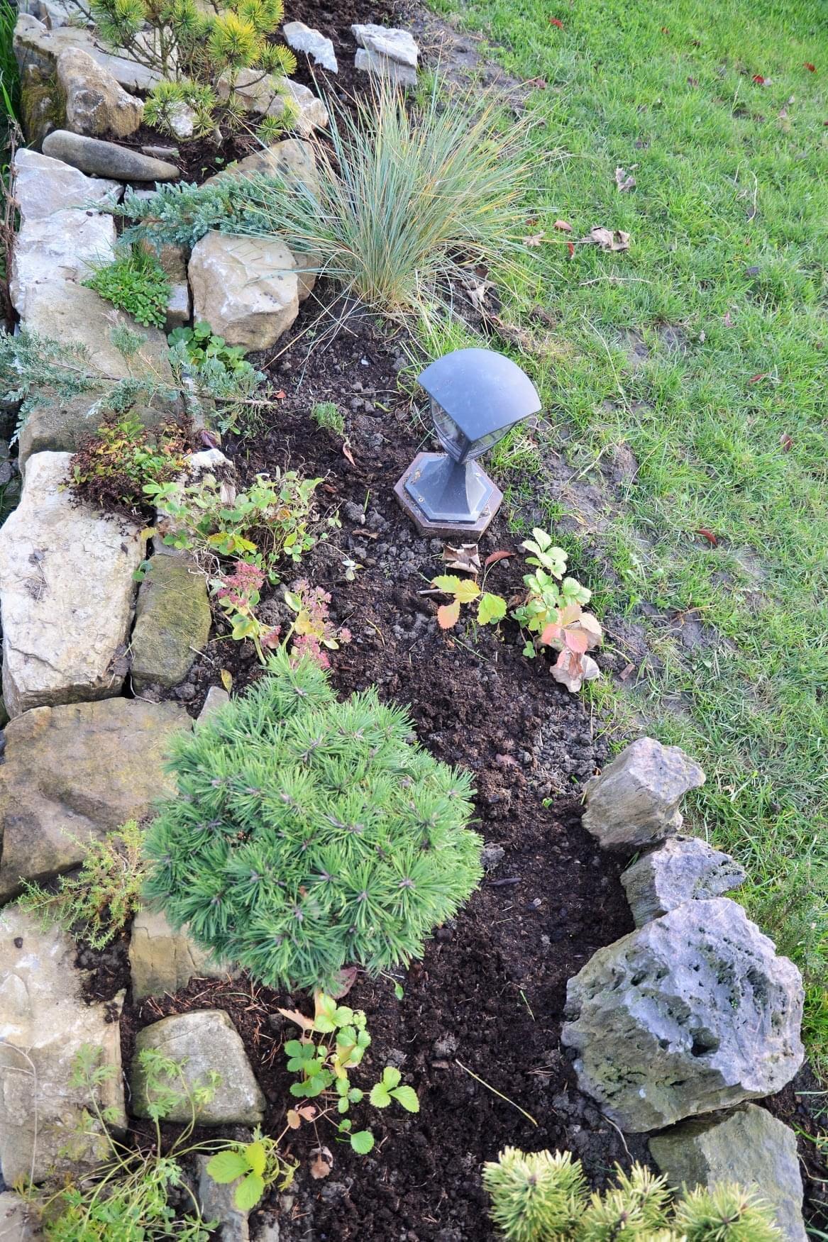 Zahrada - Obrázek č. 90