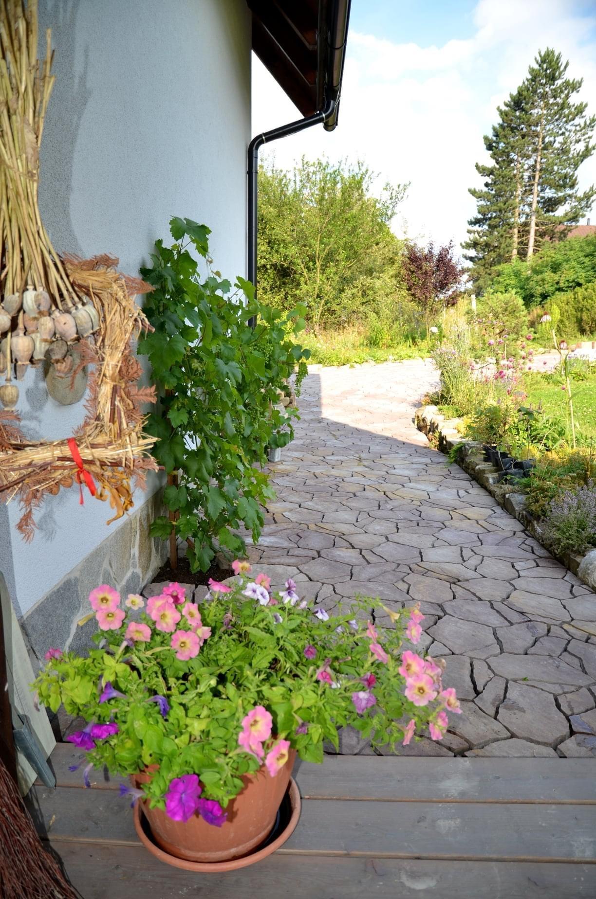 Zahrada - Obrázek č. 364