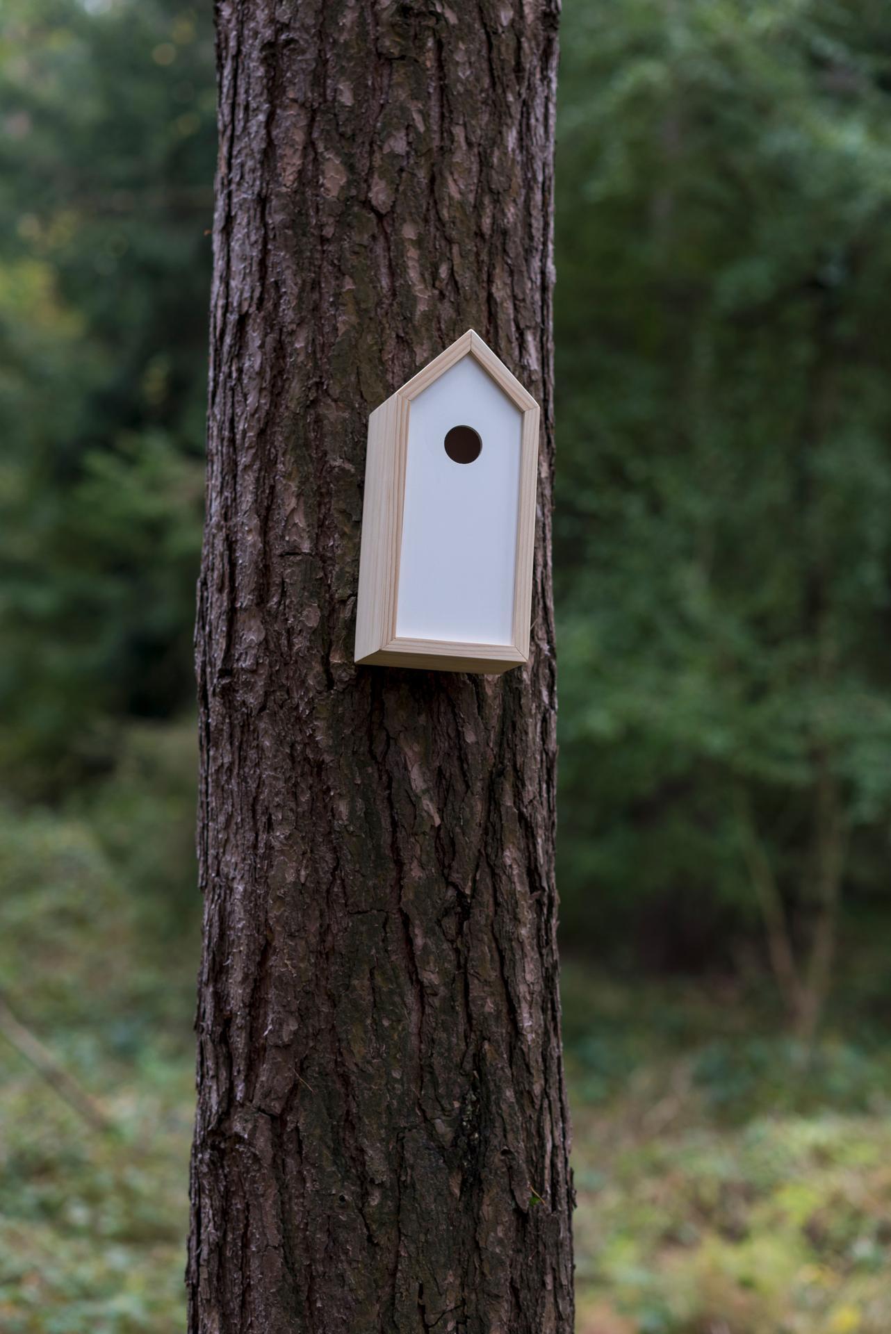 Ptačí budky a krmítka - Obrázek č. 1