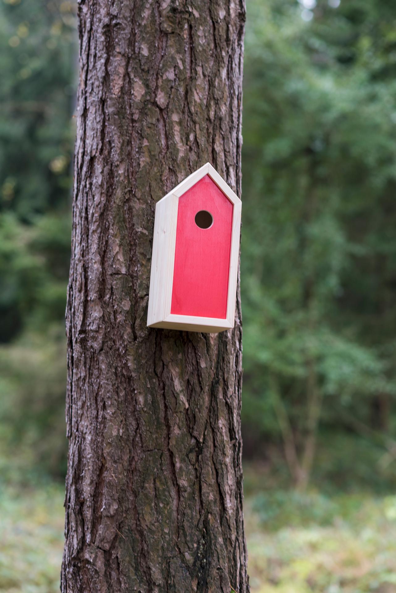 Ptačí budky a krmítka - Obrázek č. 5
