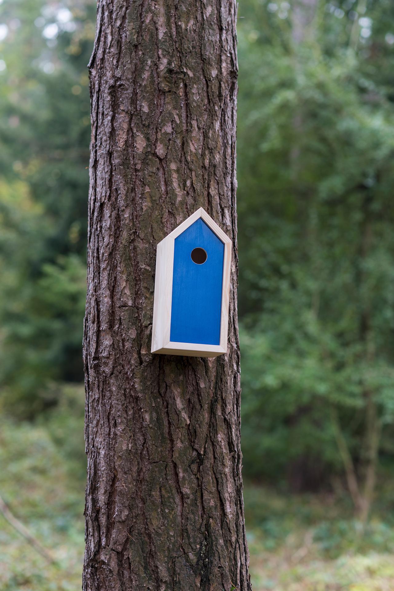 Ptačí budky a krmítka - Obrázek č. 4