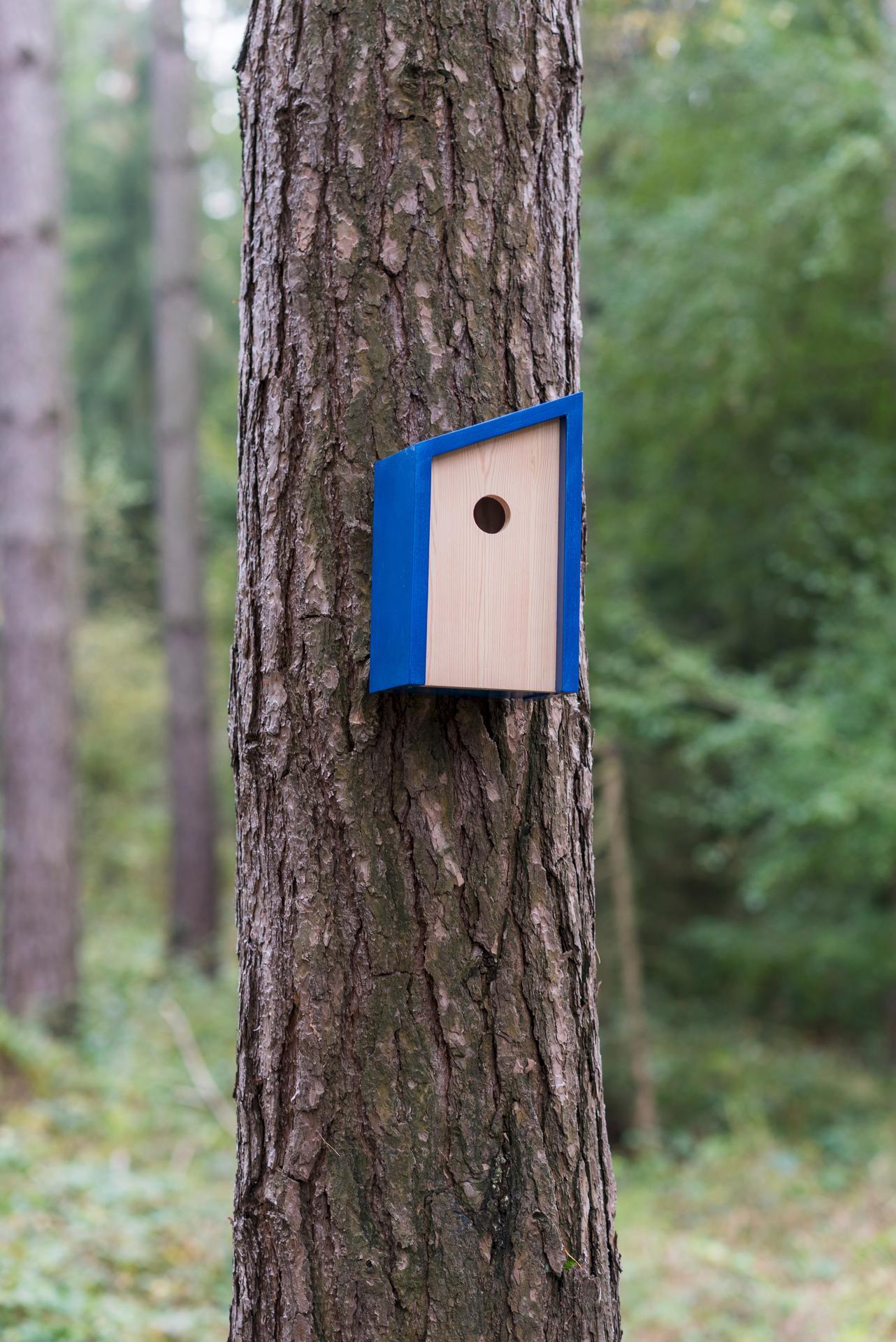 Ptačí budky a krmítka - Obrázek č. 21