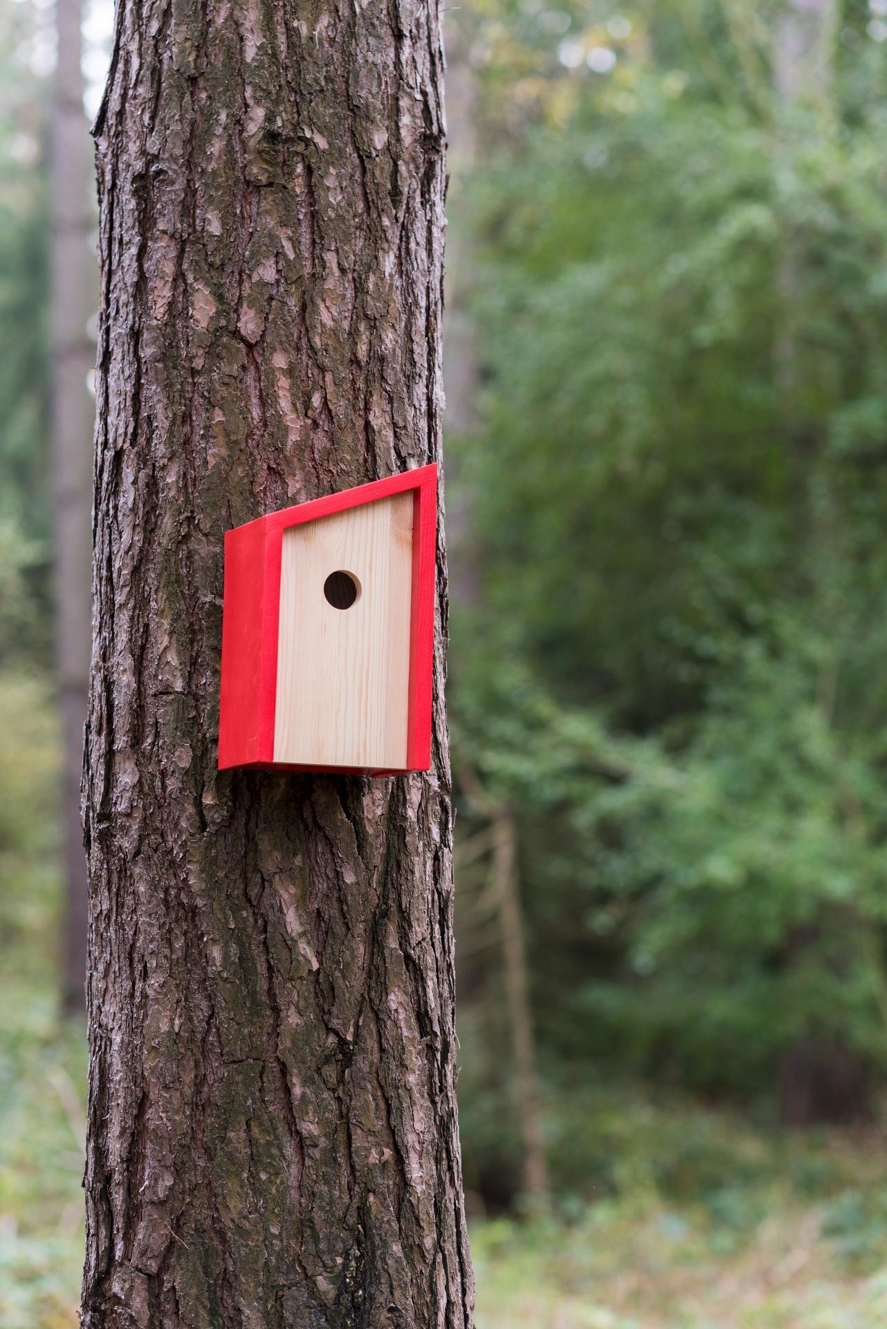 Ptačí budky a krmítka - Obrázek č. 19