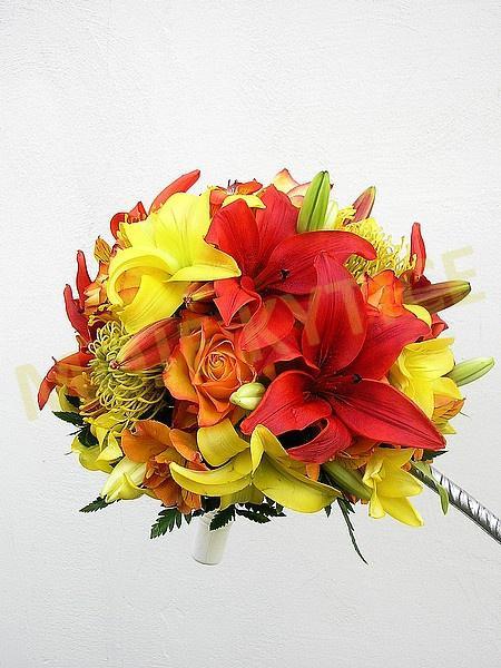 Představy - Ohnivé růže