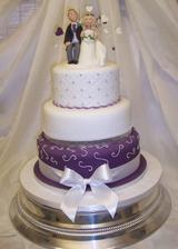 nasa torta zajednana