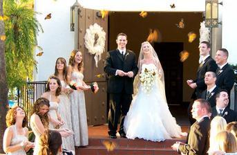 vypustenie motýľov-chceli by sme, bolo by to krásne :)