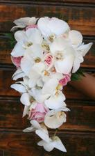 kyticka jedine z orchidei :)