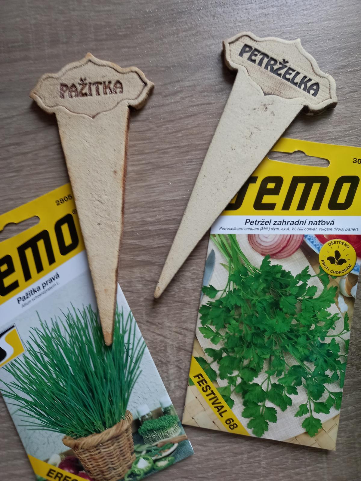 Jedlá zahrada - Bylinky pak přesadíme na záhon