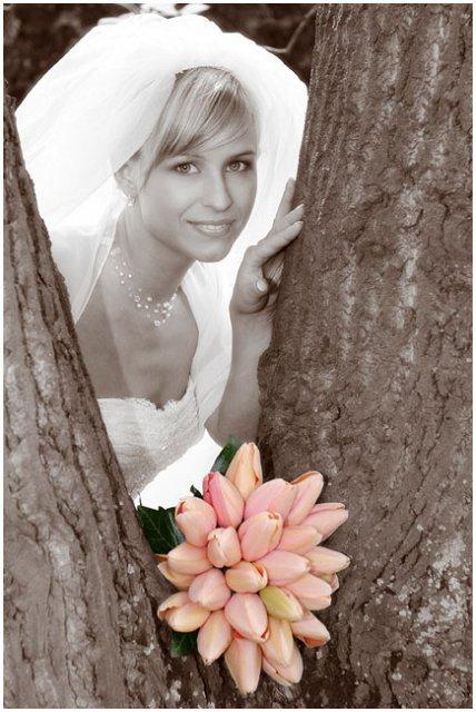 Moja fialova svadba - Takto si to nejako predstavujem