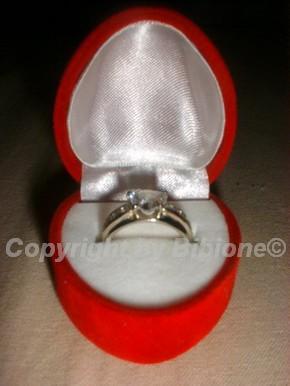 Moje splnené sny - Môj zásnubny prstienok z bieleho zlata v krabičke. Drahý ho dal robiť na objednávku.
