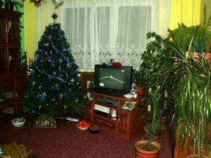 vianocny stromcek a nasa dzungla