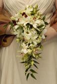 SVATEBNÍ KURZ (nejen pro nevěsty),