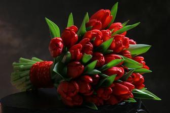 ....další krásné tulipány....