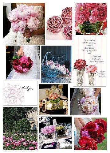 Kvety - Obrázek č. 11