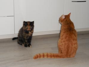 Naši dva raubíři :-)