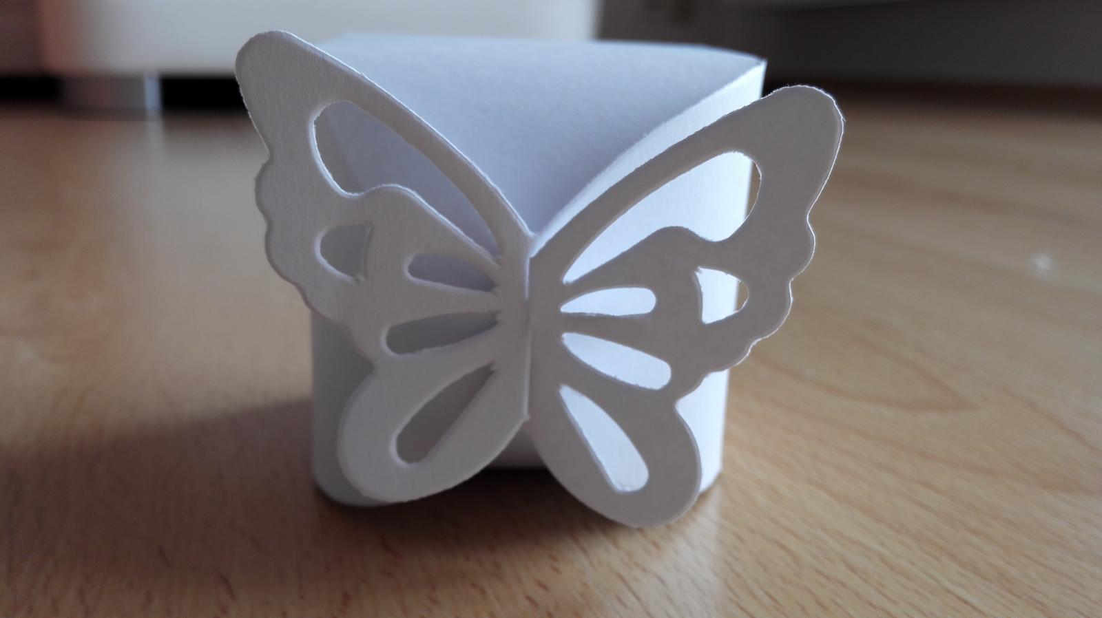 Krabicky na vysluzky - motyl - Obrázek č. 2