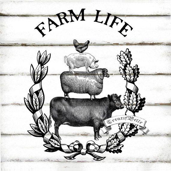 Na farmě - Obrázek č. 89