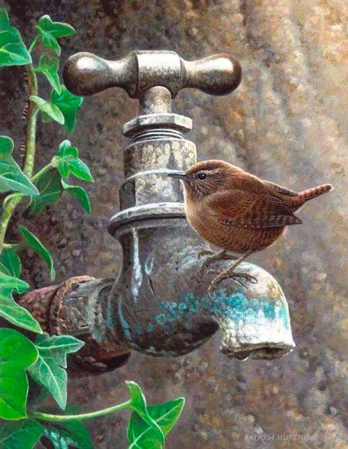 Ptáčkové všude, kam se podíváš :) - Obrázek č. 186