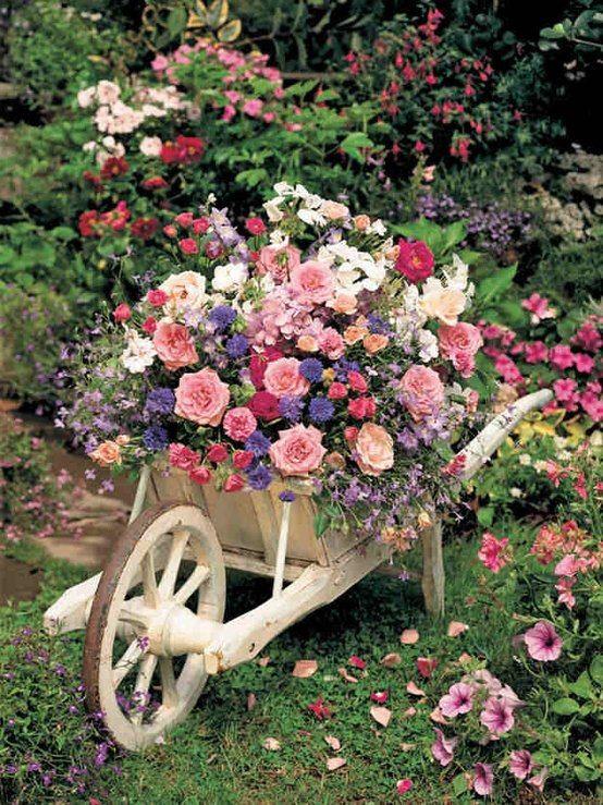 Na zahrádce aneb inspirace do zahrady - Obrázek č. 22