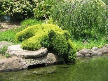 Na zahrádce aneb inspirace do zahrady - Obrázek č. 69